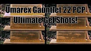 Umarex Gauntlet 22 PCP Axeon Optics Ultimate Pellet Gel Tests