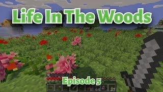 Minecraft Life In The Woods   EP05
