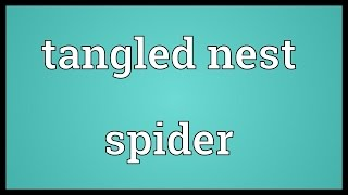 Tangled nest spider Meaning