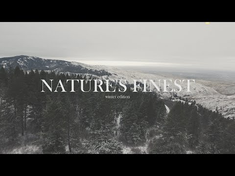 Nature's Finest - Winter Edition