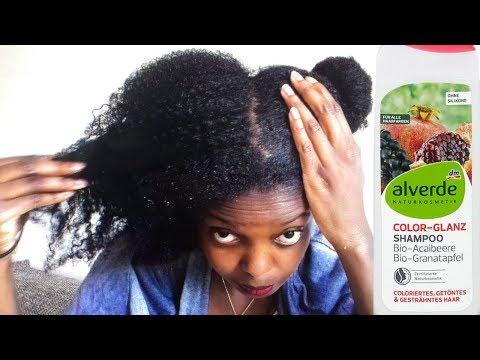 Review- DM Produkt //Sehr Günstiges Alerde Shampoo Ohne Sulfate