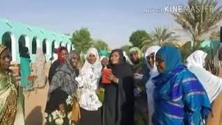 تحميل اغاني حليل اهلنا محمد بشير MP3