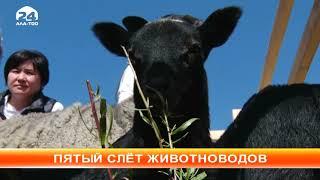 """М.Абылгазиев: """"Развитие животноводства в стране - одна из приоритетных задач правительства"""""""