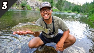 Fly Fishing A Remote Mountain Stream For Trout! (Catch Cook And Camp)
