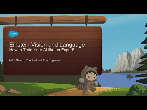 f9feba8cbaa43 Einstein Vision: Train Your AI Like An Expert!