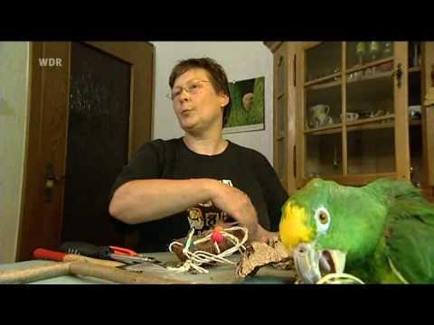 Vogel-Spielzeug basteln mit Manolito