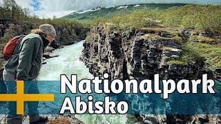 Nationalpark Abisko - Blühende Berge, tosendes Wasser und Startpunkt für den 430km Kungsleden