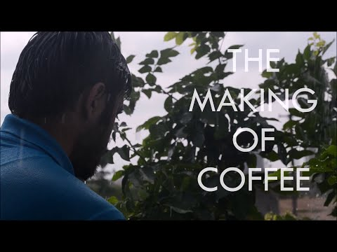 The Making Of Coffee