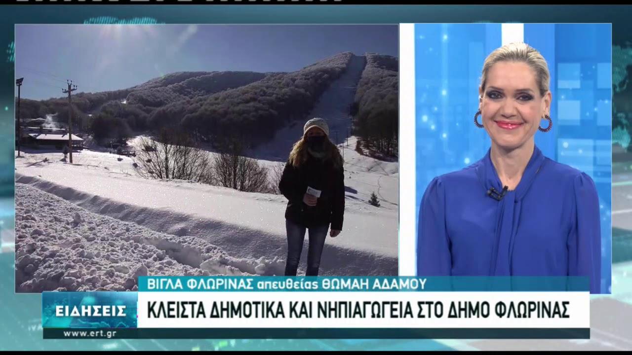 Χωρίς προβλήματα η χιονόπτωση στη Φλώρινα   15/01/2021   ΕΡΤ