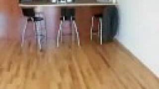 preview picture of video 'Condo For Sale 470 Sherbrooke Lachine'