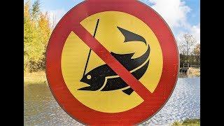 ✅ Запретный метод ловли !!! Вот это рыбалка 2018 ты не поверишь!