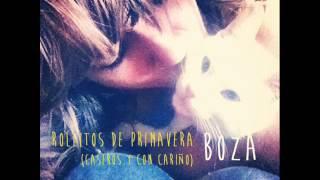 10. Carmen Boza - Cartas Desde El Círculo Polar