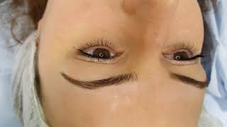 3D Realism Eyebrows Microblading by El Truchan @ Perfect Definition