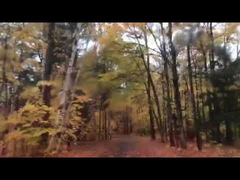 Video Of Fish Creek Pond Campground, NY