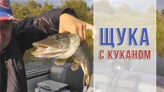 Для чего нужен кукан рыболовный