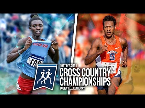 2017 NCAA Cross Country Championships | VLOG 015