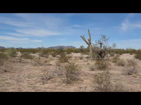 Video Of Gunsight Wash, AZ