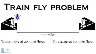 The Train Fly Problem