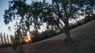 Freestyle FPV Orca 4k30fps