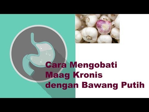 Video cara mengobati maag kronis dengan bawang putih