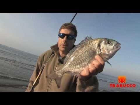 Vivaio da pesca russo konstantinovo trota di lago