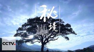 Китай на кончике языка 2-06