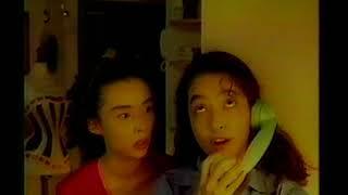 ハウス食品ハウスディッシュアップ中嶋朋子高木美保1993cm