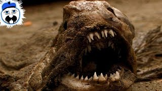 15 Creepiest Things We've Ever Discovered