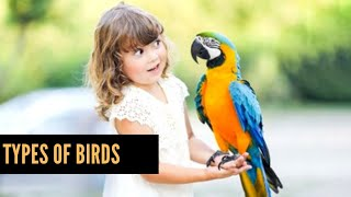 Top BIRDS in the world |Birds Names and pictures for kids |Flamingo, ostrich and many More| Hd pics