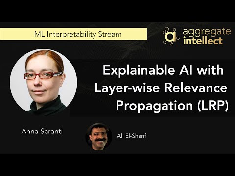 Explainable AI with Layer-wise Relevance Propagation (LRP)