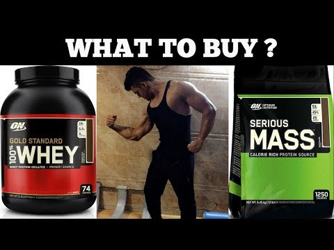 Whey Protein Vs Mass Gainer   What To Buy ?