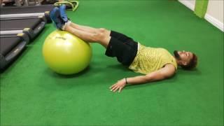 Swiss Ball Alternate Leg Raise