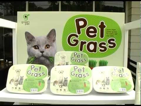 Green Pet Press Conference