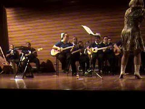 Ver vídeoSíndrome de Down: Himno a la alegría