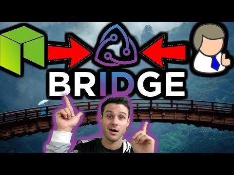NEO Identity Solution | The Bridge $TOLL | KYC and AML✅| MVP Just Released! | NEO Crypto News