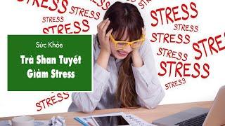 Trà Shan Tuyết Giúp Giảm Stress
