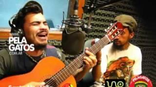 Santa Montana - Reggae en PelaGatos - Santa Planta