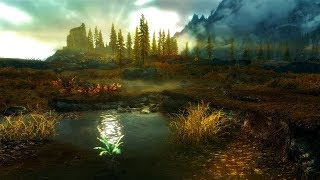Skyrim - Requiem(No Death). #1. Босмер-Лучник.