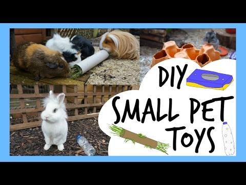 DIY Small Pet Toys   Pets Palace Kids