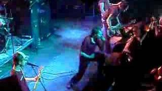 Donots - We got the Noise live