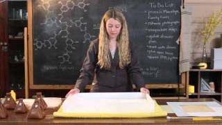 Humidifying and Flattening Paper Records