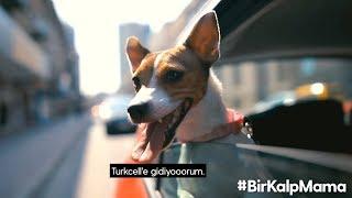 Turkcell - Bir Kalp Mama
