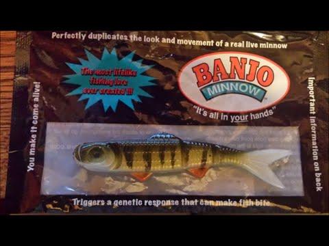 Banjo Minnow Pond Fishing