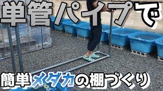 単管パイプを使ってメダカの棚づくり【自作DIYめだか】