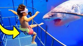 Kid FALLS into shark tank, then THIS happens...