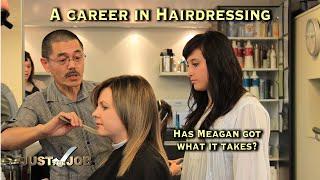 A Career in Hairdressing (JTJS82013)