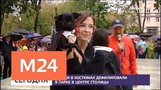 Собаки в костюмах дефилировали в парке в центре столицы - Москва 24