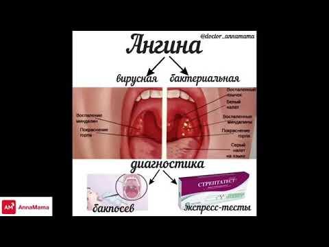 Лечение аденомы и простаты народными методами