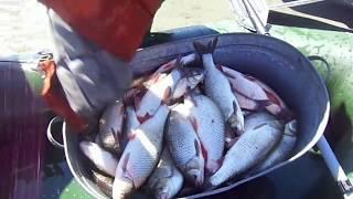 Ловля рыбы переметом в сибири