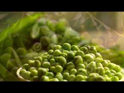 Овощи на гриле для диабетика